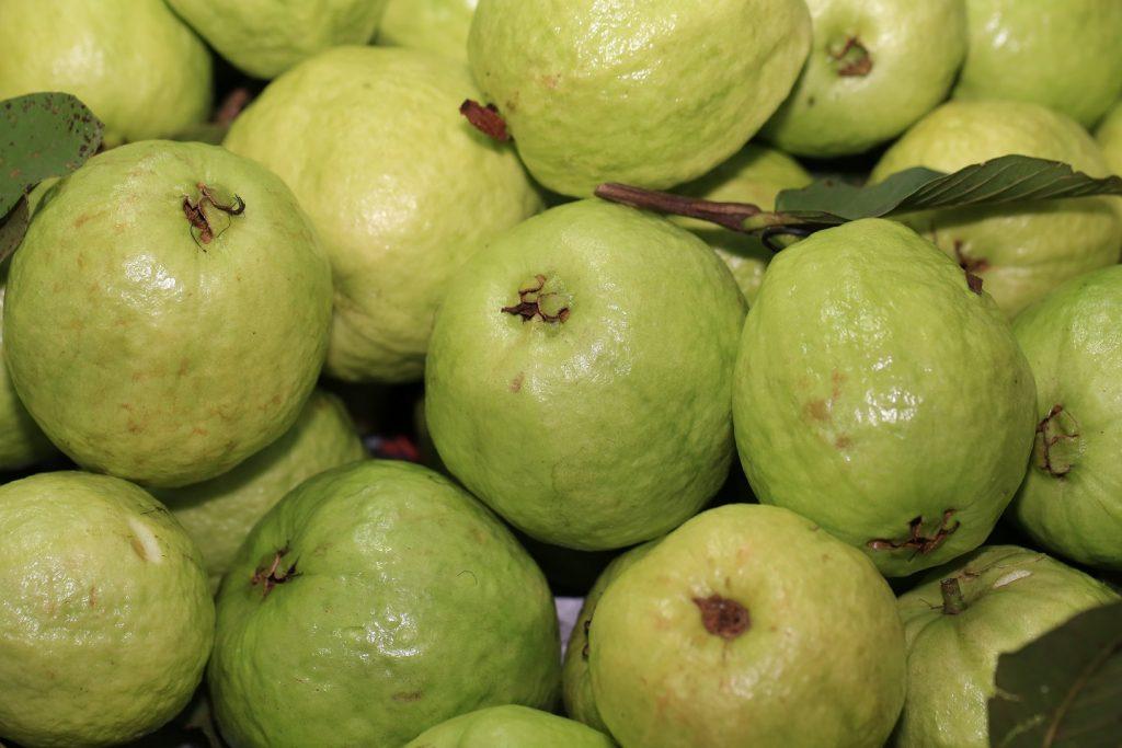 Guava-high-vitamin-c