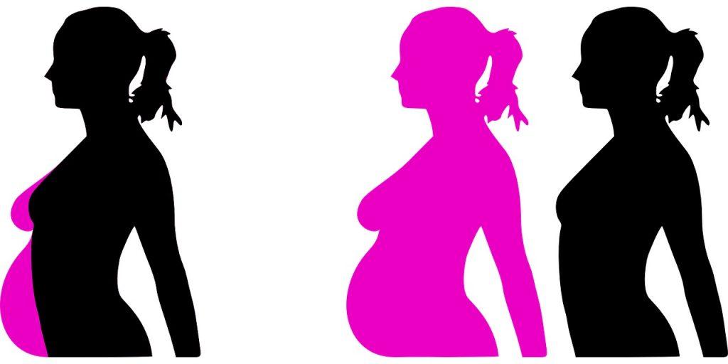 ฮอร์โมนเอสโตรเจนมีบทบาทสำคัญในการสงวนแคลเซียมไว้ในกระดูก โดยเฉพาะอย่างยิ่งในช่วงที่ตั้งครรภ์และหลังคลอดบุตร